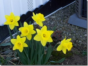 April-May2008 003