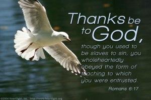 Romans 6;17
